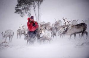 Top ten: Aviemore, Scotland: Eve Grayson, a Reindeer herder of the Cairngorm Reindee