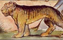 William Blake, The Tyger
