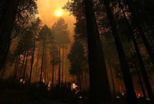 Extreme weather: Rim Fire Burns Near Yosemite National Park