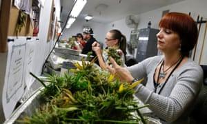 Marijuana dispensary in Denver