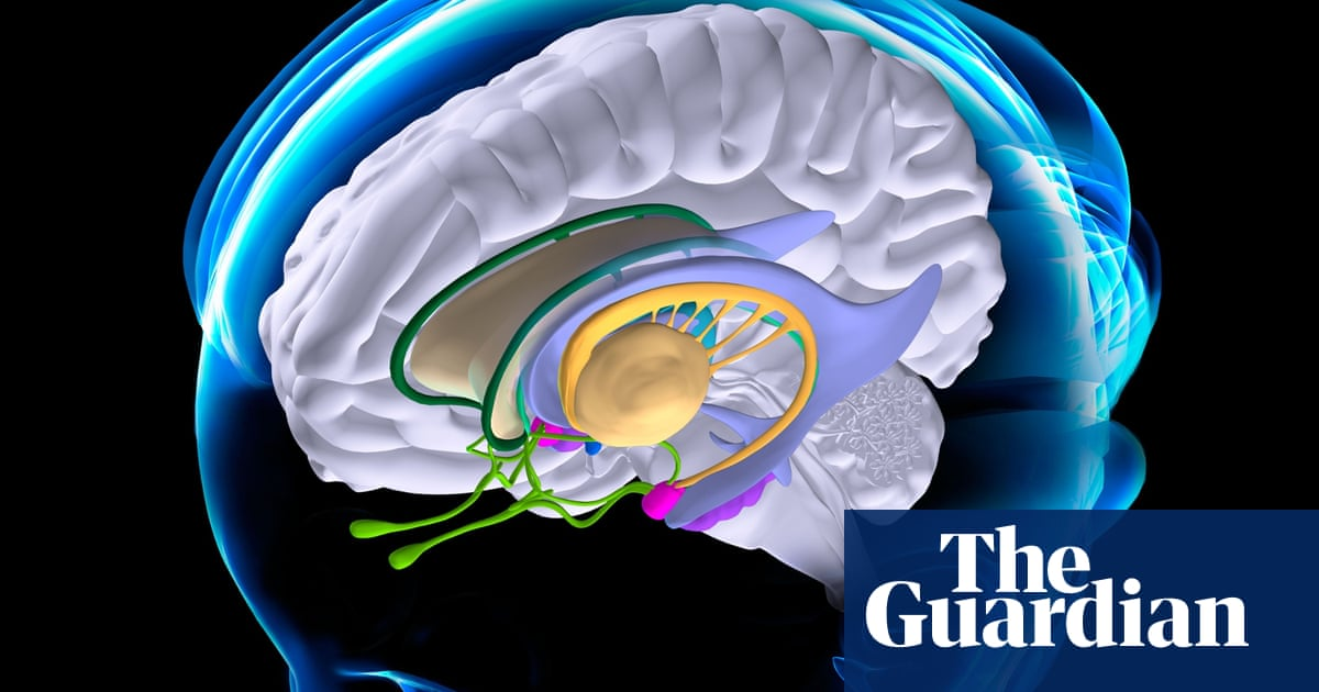 Does neuromarketing live up to the hype? | Pete Etchells