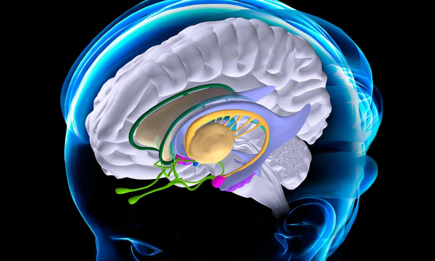 Does neuromarketing live up to the hype?