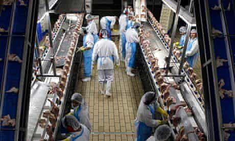 Supermarket chicken Brazil