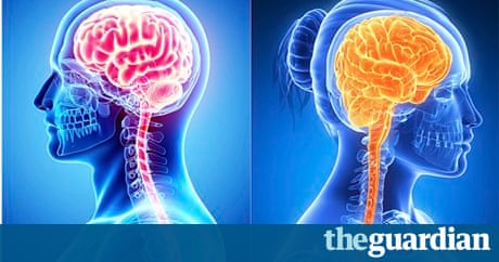 why it s time for brain science to ditch the venus and mars why it s time for brain science to ditch the venus and mars cliche science the guardian