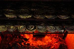 FTA: Beawiharta: A tray of snakes dry inside an oven