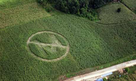 Monsanto crop protest