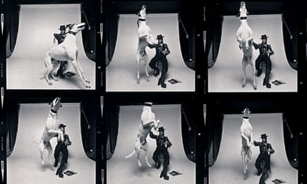 The contact sheet for the Diamond Dogs album cover shoot