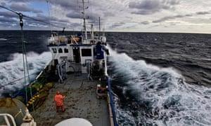 Coalfish fishery in the North Sea - 23 Nov 2009