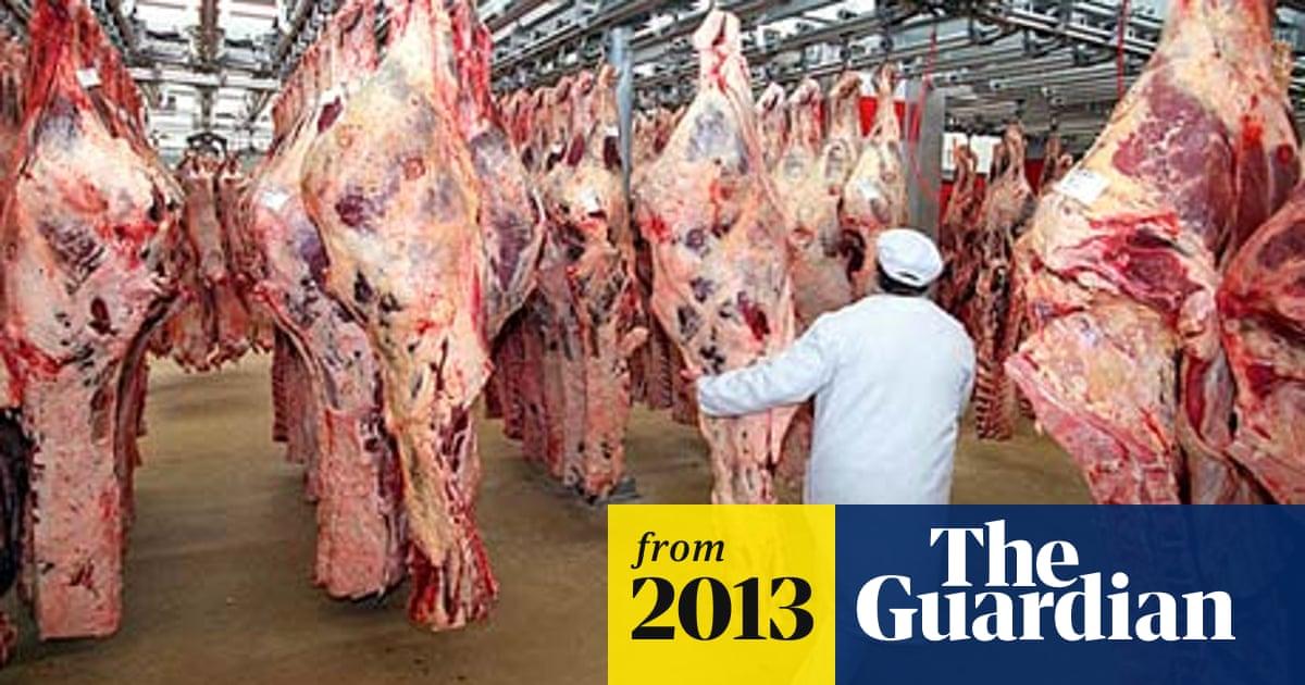 Halve meat consumption, scientists urge rich world