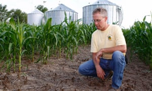 Farmer Matt Johnson in Indiana, affected by US drought