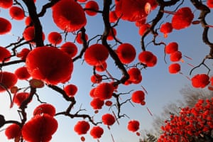 Lunar New Year: Trees decorated with red lanterns for Lunar New Year celebrations