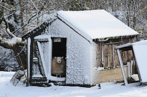 20 Photos: Winter weather in Penistone, South Yorkshire