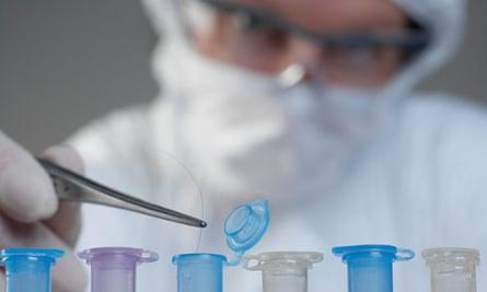 Scientist holding hair for DNA sample