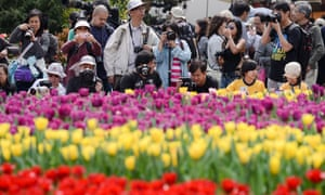 Cameras are also in evidence in Hong Kong as visitors take pictures at this weeks' flower show there.