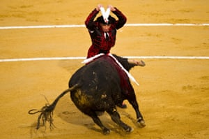 A bullfighter performs during a bullfight as part of the Las Fallas Festival in Valencia, Spain.
