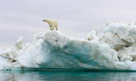 Polar bear standing atop an iceberg floating in the Beaufort Sea, Arctic Ocean, Alaska