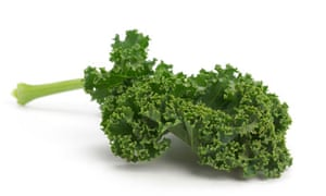 Green Curly Kale. Image shot 2008. Exact date unknown.