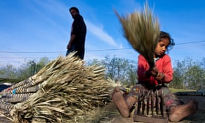 A young Indian slum dweller who migrated from the Indian state of Rajasthan to Kashmir thrashes date palms to make brooms on the side of the road in Srinagar. Kashmir has witnessed an unprecedented influx of poor migrants from different parts of India during the last two decades.