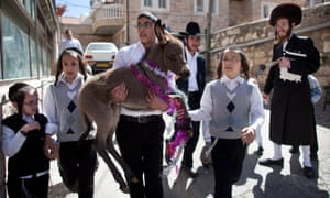 A boy carries a donkey as Ultra Orthodox Jews take part in the Pidyon Peter Chamor ceremony, or the Redemption of the first born donkey in the Meir Sharim in Jerusalem, Israel. The traditional ceremony is part of the 613 laws commemorated in the Torah.