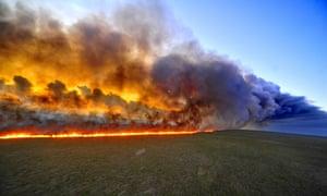 Taim Ecological Station in Rio Grande do Sul state fire