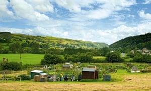 Allotments, Knucklas, Wales