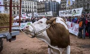 French farmer demo in Lyon
