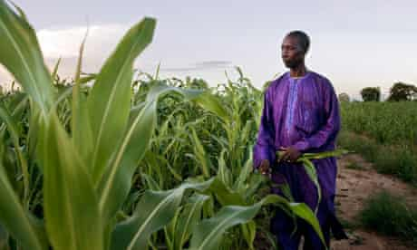 Souaibou Toure, head of a cereal cooperative in Mali