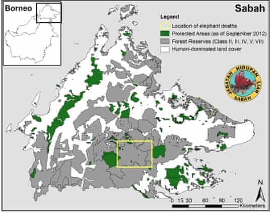 Map of pygmy elephant death location in Borneo