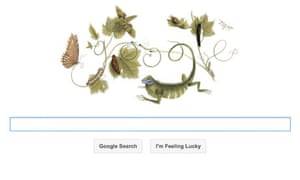 Maria Sibylla Merian Google doodle