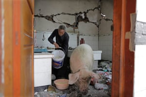 Dan Chung in China: In Wucheng village a man tends to his pig in the ruins of his house.