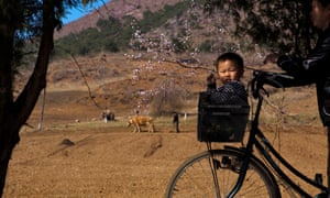 A North Korean boy rides in a bicycle's basket on a road north of Kaesong.