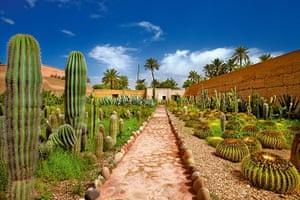 Marrakech gardens: Musee de la Palmeraie