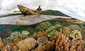 Coral reeef man in boat