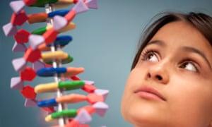 Schoolgirl looks at DNA model.