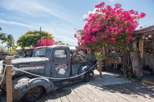 Key West City Guide: Mac's Sea Garden Key West
