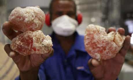 Worker holds gum arabic