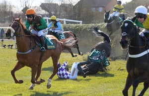 Dangers of Aintree: Horse 'Bold Addition'