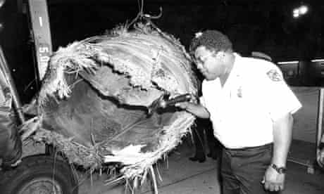 A customs officer inspects debris from Skylab