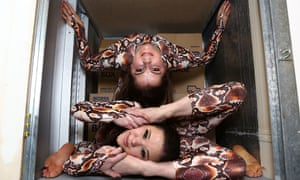 Contortionists Pixie Le Knot (great name), below, and Oohla Lowri squeeze themselves into a square locker at Access Self Storage to highlight the variety of storage options available in Fulham, London.