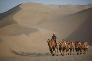 Crescent lake in China: Camels near the Yueyaquan Crescent Lake in Dunhuang, in China