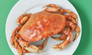 Crab on a Plate
