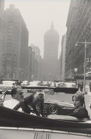 Garry Winogrand: Garry Winogrand, Park Avenue, New York, 1959