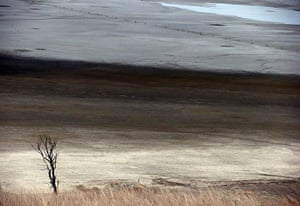 Week in wildlife: dried-up area of Lake George, north of Canberra, Australia