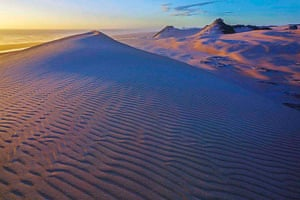 Tarkine region: Dunefield on the Tarkine wilderness coast