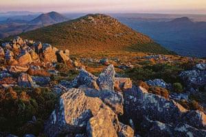 Tarkine region: Norfolk Range wilderness, Tarkine