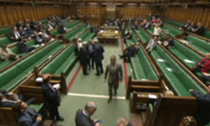 MPs voting on the Loughton amendment