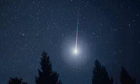Spectacular meteors during a Leonid meteor shower in forest