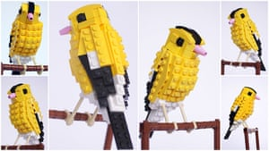 Lego Birds: North America: Andy the American goldfinch