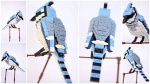 Lego Birds: North America: Bradley the Blue Jay