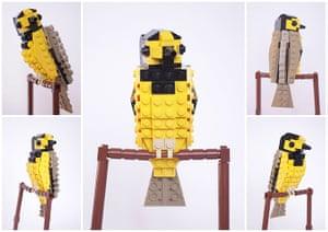 Lego Birds: North America: Hudson the Hooded Warbler